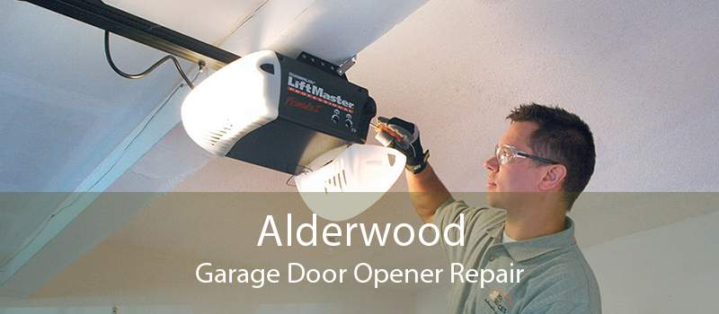 Alderwood Garage Door Opener Repair