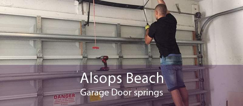 Alsops Beach Garage Door springs