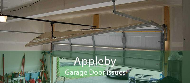 Appleby Garage Door issues