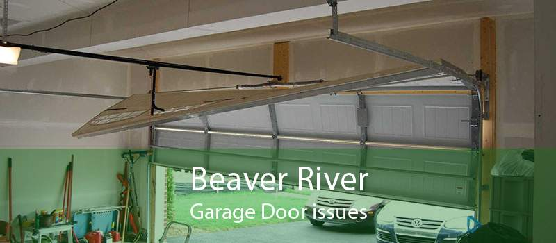 Beaver River Garage Door issues