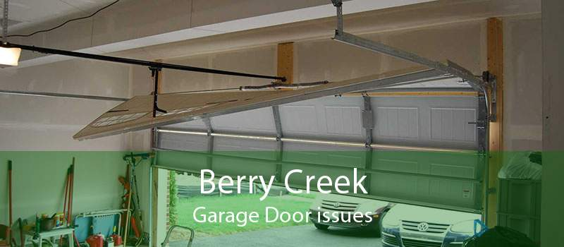 Berry Creek Garage Door issues