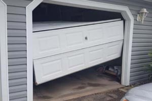 garage door repair in Armitage